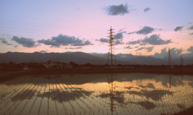 Quiet Space — #31 — Nature Mirror