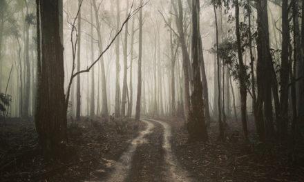 Quiet Space — #165 — Part Timer